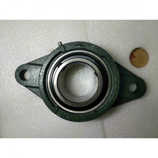 1.1250 in x 4.5938 in x 83 mm  1.1250 in x 4.5938 in x 83 mm  skf F2B 102-TF Ball bearing oval flanged units #2 image